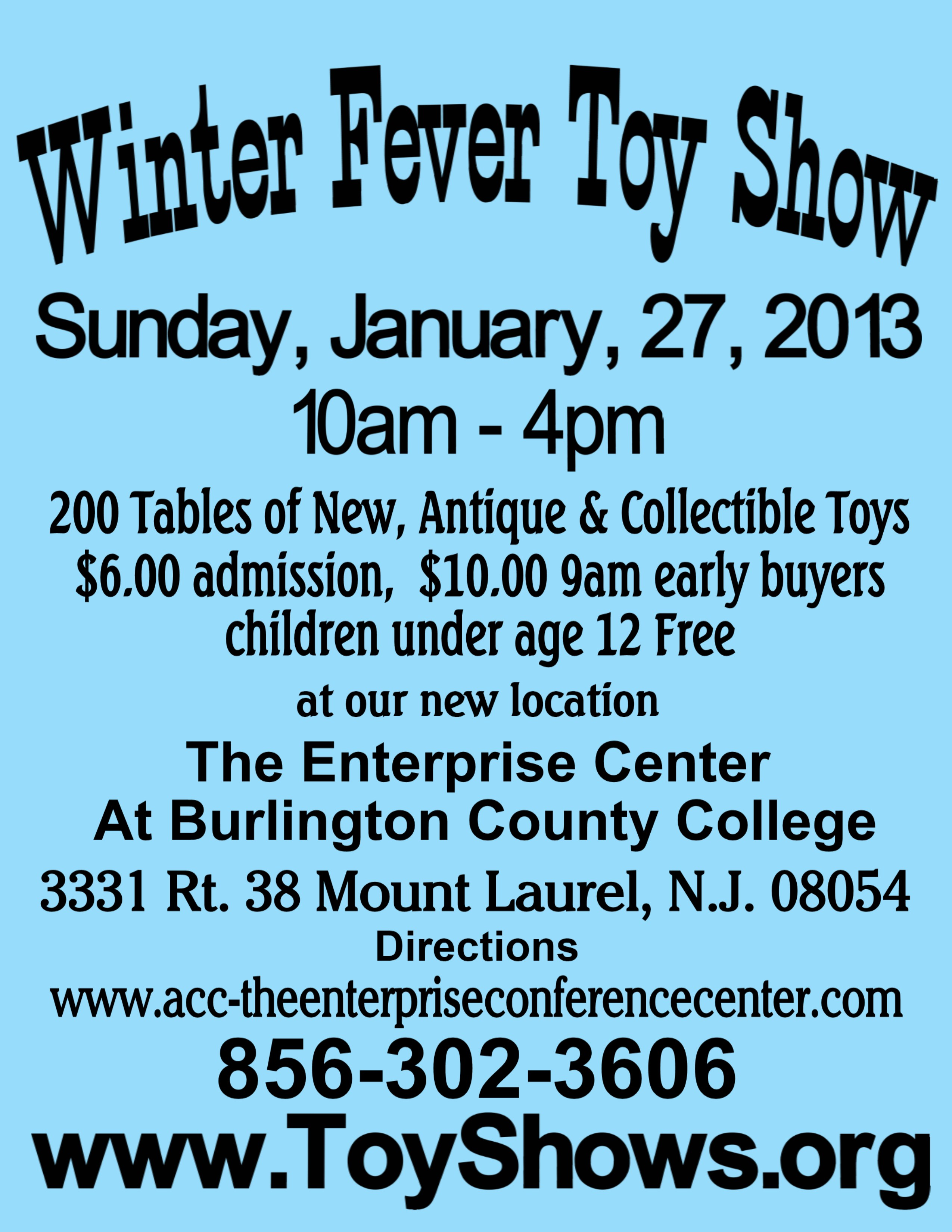 Winter Fever Toy Show 2013 Flyer